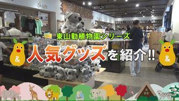 東山・人気グッズ.JPG